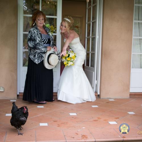 Wedding Venue | ALRU FARM