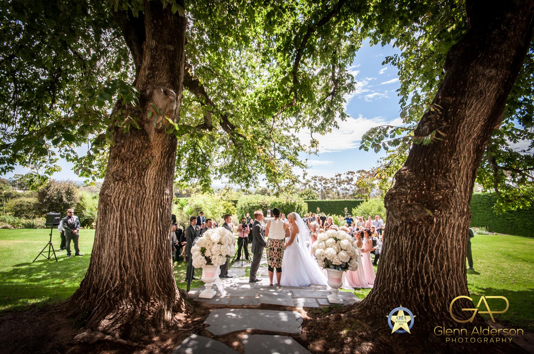 Adelaide Weddings (2 of 15)