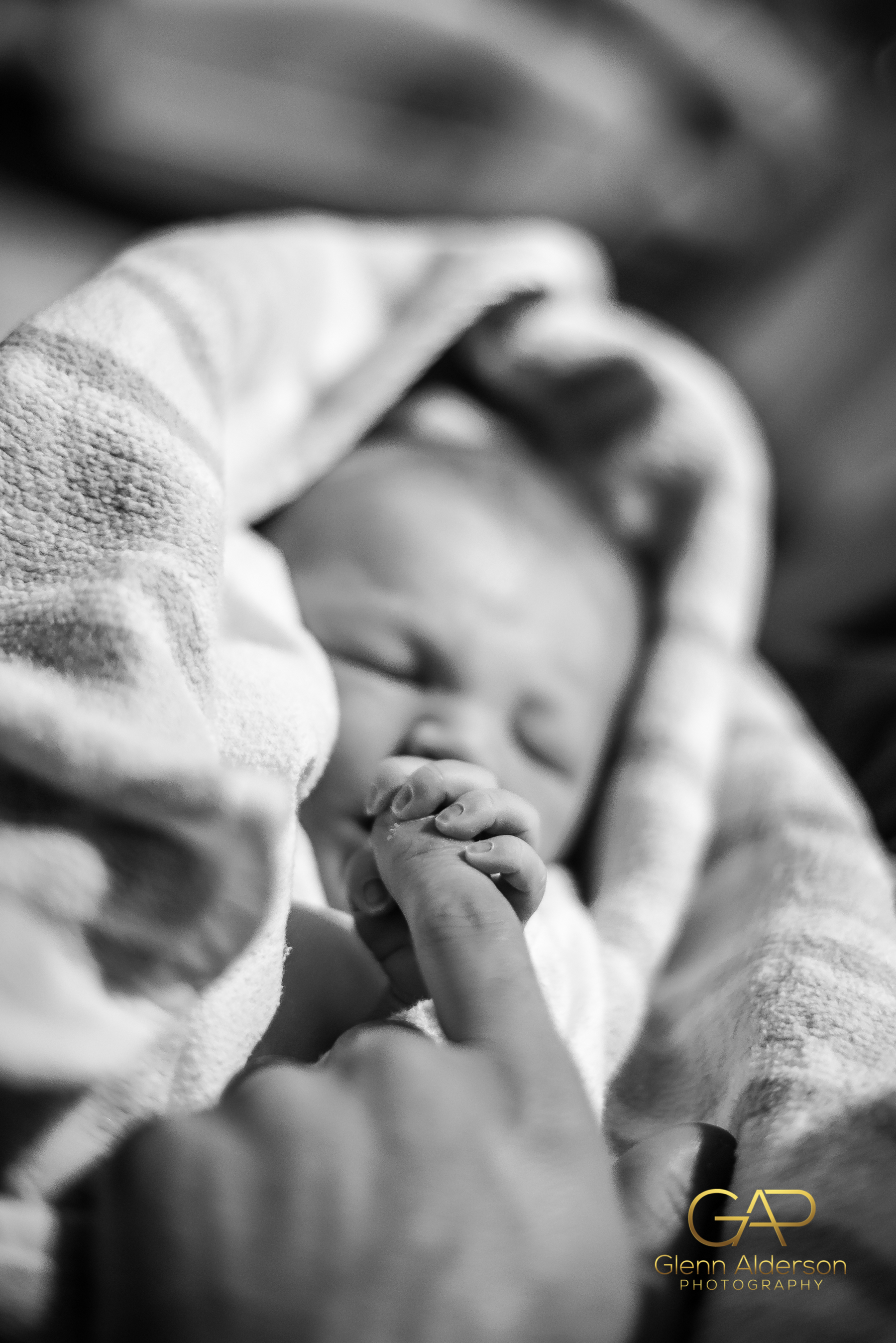 Adelaide Birth Photography