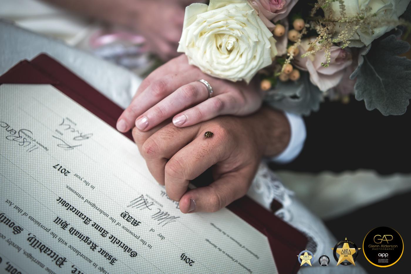 Good Luck _ Adelaide Hills Wedding