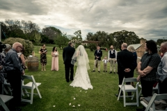 Paxton Wines, Mclaren Vale Wedding, South Australia-15